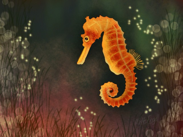 sea horse #Doodle day